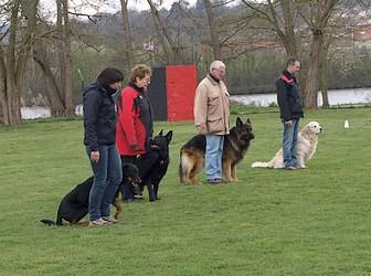 club canin uckange horaires